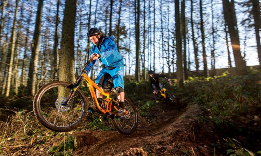 ¿Como elegir la bicicleta de montaña correcta?