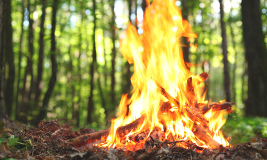 Los 3 elementos del fuego
