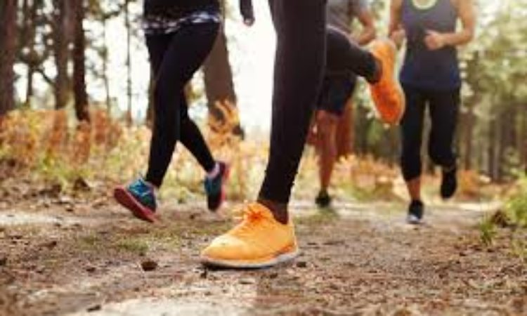 ¿Como preparar una carrera de trail running?